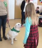 Kai į klasę ateina šuo...