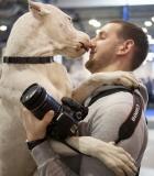 Kaip šuo atpažįsta žmogų?