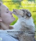 Marijampolėje – paskaitos šunų augintojams