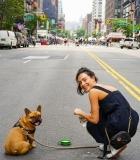 Geriausias dubenėlis šuniui: koks ir kodėl?