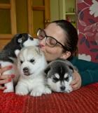 I.Gudmonienė: Įgyti kinologinės patirties man padėjo ir šunys