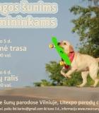 """Tarptautinėse parodose – """"Olimpinė trasa"""" ir """"Šunų ralis"""""""