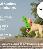 Šunys kviečia šeimininkus dalyvauti konkursuose