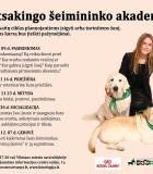 Nemokamos paskaitos šunų mylėtojams
