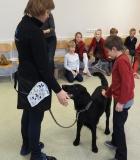 Bendravimas su šunimi: daugiau, nei įprastas užsiėmimas